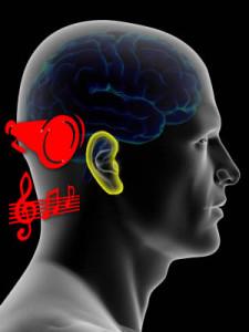 Imagem:http://www.neurosciencemarketing.com/blog/articles/audio-branding.htm